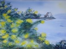 Mimosas sur Cancale 51 x 36 cm