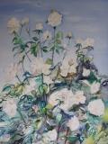 Rosier blanc 40 x 30 cm